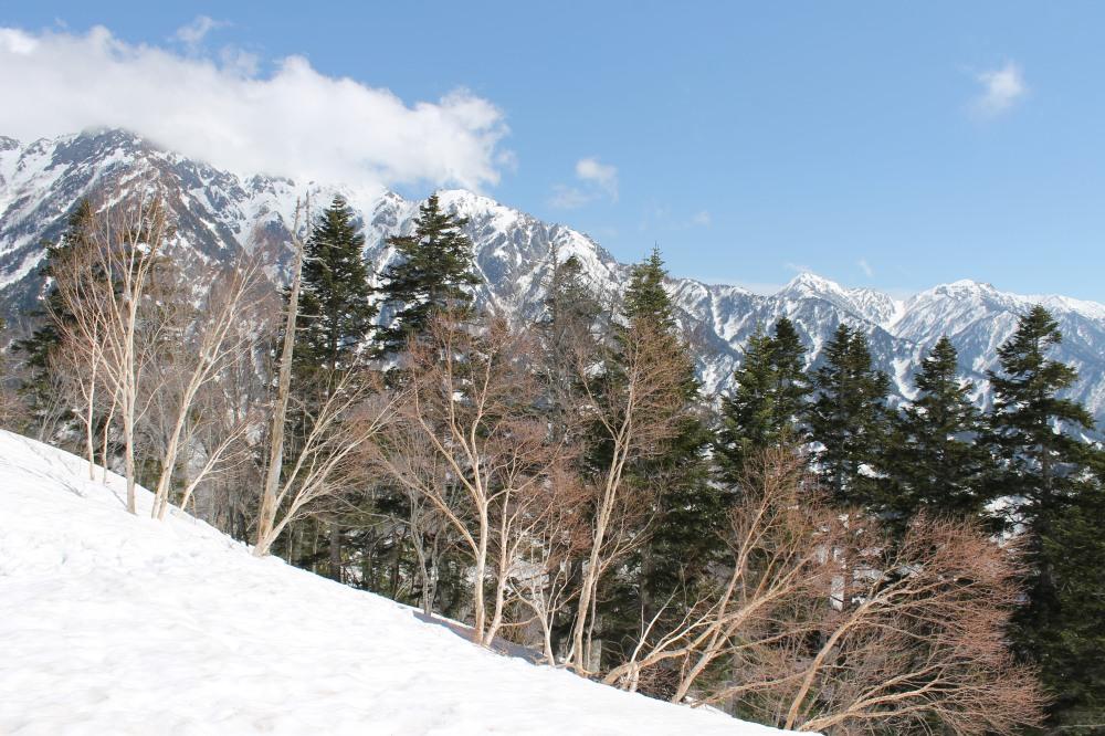 Tateyama Alpine Route Nagoya Travelanyway (9)