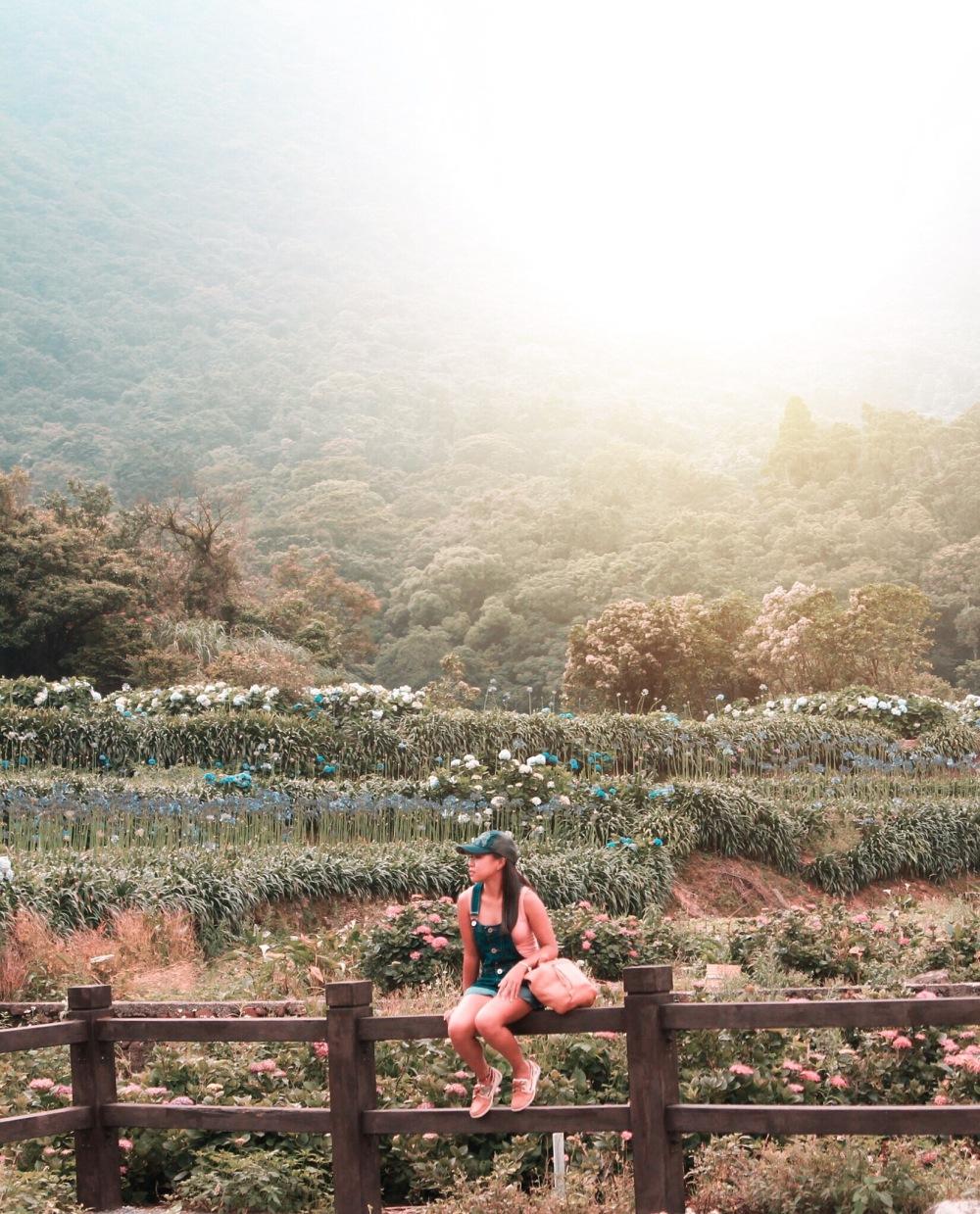 Travelanyway Taiwan